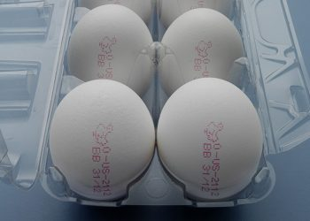MKD- Eggs 3